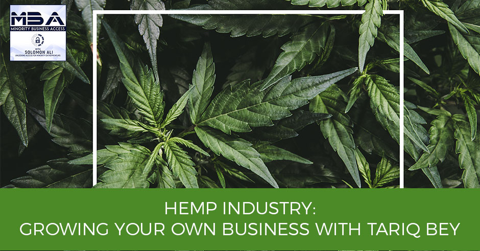 MBA 3 | Hemp Industry